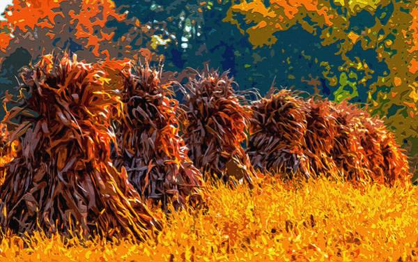 Amish Country Digital Art - Corn Shocks 2 by Brian Stevens