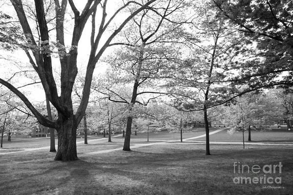 Photograph - Cornell University Landscape by University Icons