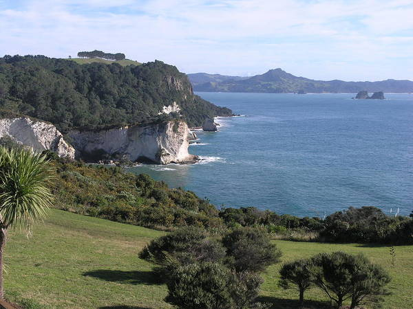 Photograph - Coromandel by Olaf Christian