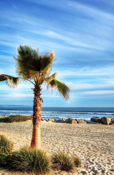 Photograph - Coronado Beach Dreams by Mel Steinhauer