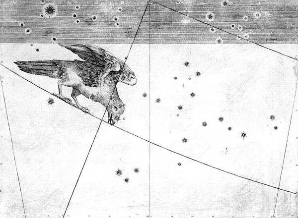 First Star Photograph - Corvus Constellation by Royal Astronomical Society/science Photo Library