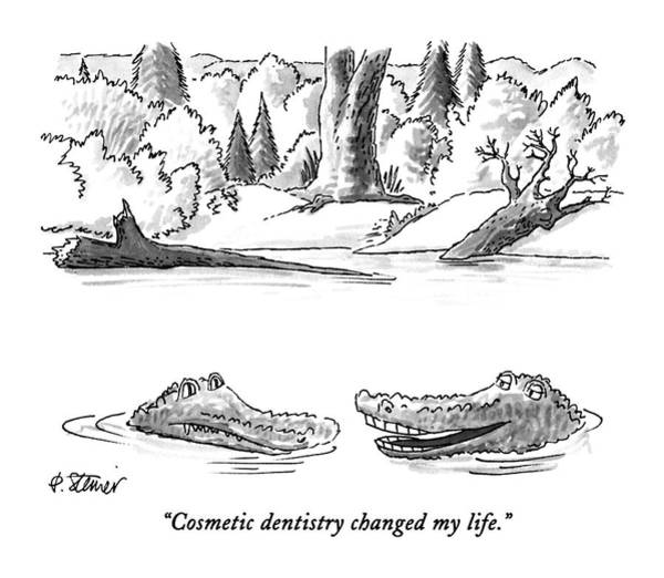 Cosmetic Dentistry Changed My Life Art Print