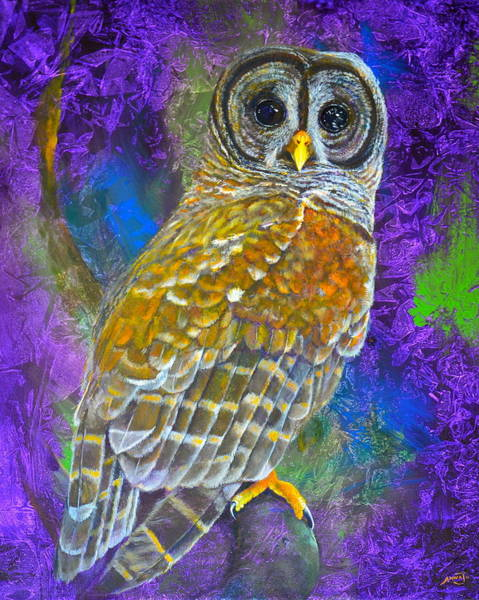 Wall Art - Painting - Cosmic Owl by AnnaJo Vahle