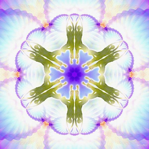 Digital Art - Cosmic Spiral Kaleidoscope 04 by Derek Gedney