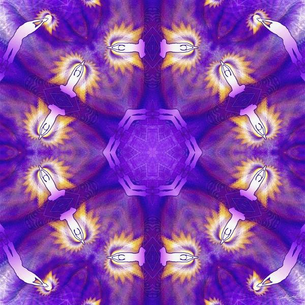 Digital Art - Cosmic Spiral Kaleidoscope 28 by Derek Gedney