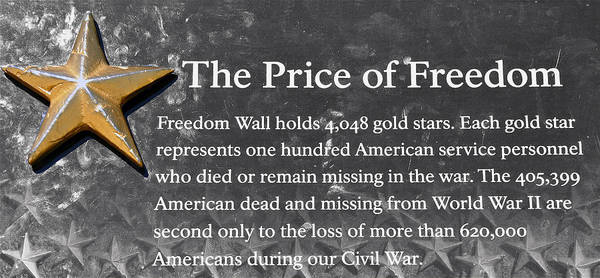 Photograph - Cost Of War by Donna Proctor