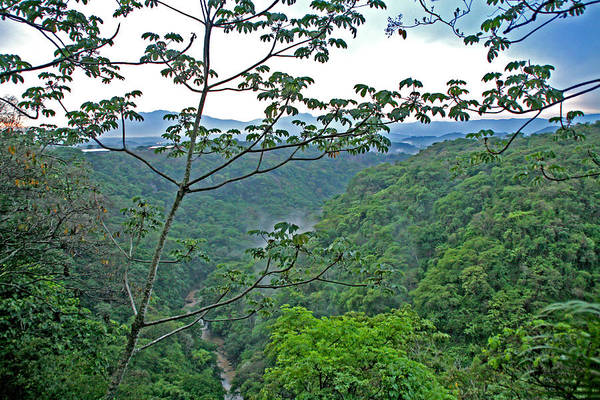 Photograph - Costa Rica River And Jungle by Peggy Collins