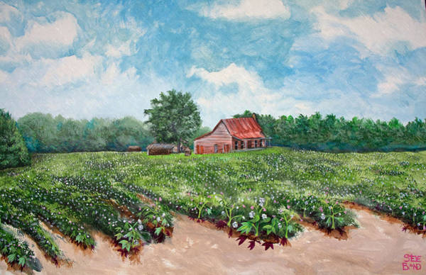 Painting - Cotton Be Here by Virginia Bond