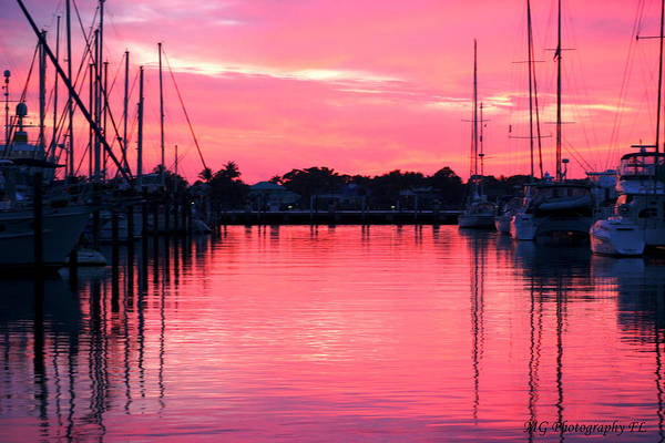 Photograph - Cotton Candy Sunset by Marty Gayler