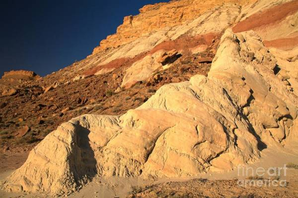 Photograph - Cottonwood Colored Badlands by Adam Jewell