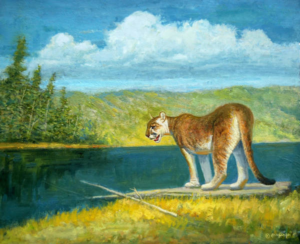 Painting - Cougar  Country by Mel Greifinger