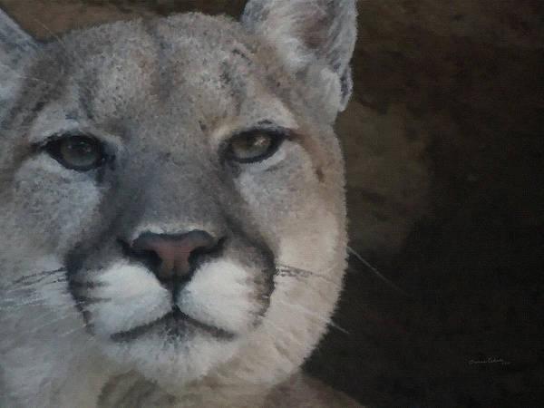 Mountain Lion Digital Art - Cougar Digitally Enhanced by Ernie Echols