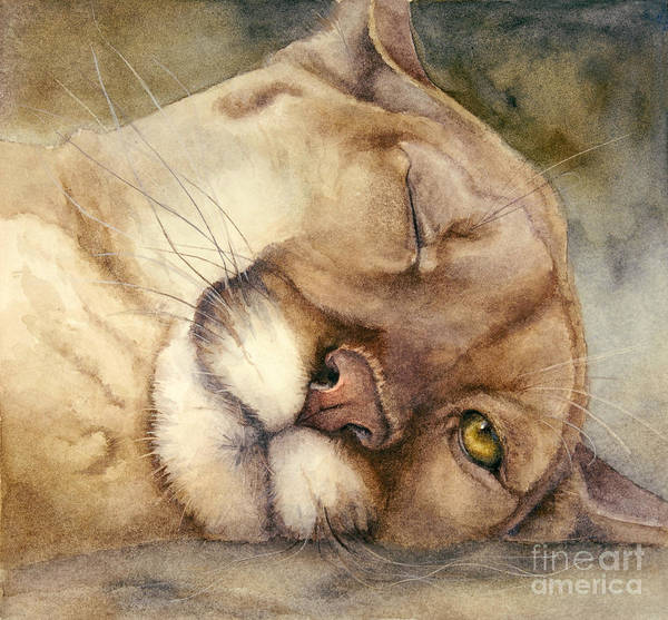 Mountain Lion Painting - Cougar    I See You     by Bonnie Rinier