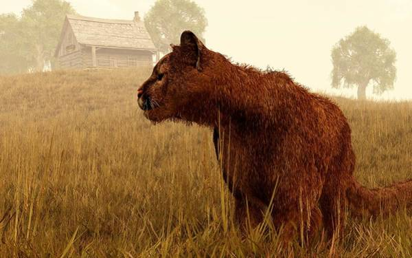 Digital Art - Cougar In A Field by Daniel Eskridge