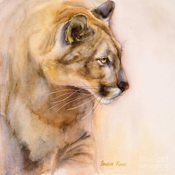 Mountain Lion Painting - Cougar On The Prowl by Bonnie Rinier