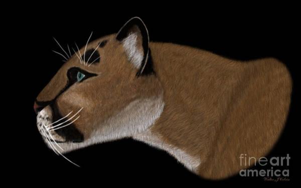Puma Digital Art - Cougar Portrait by Walter Colvin