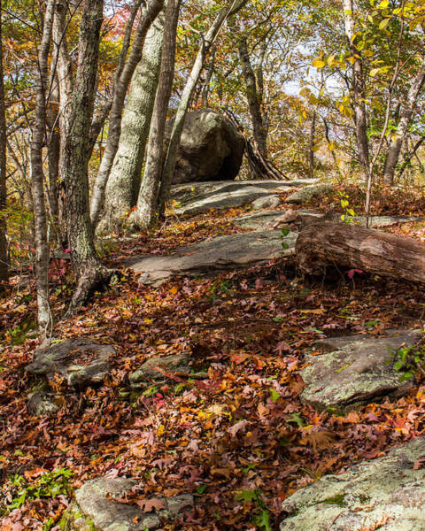 Glacial Erratic Photograph - Council Rock by Kirkodd Photography Of New England