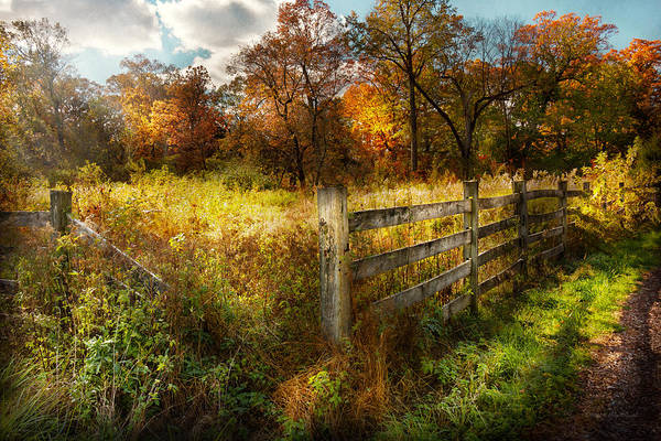 Photograph - Country - Autumn Years  by Mike Savad