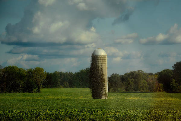 Photograph - Country Beacon by Jai Johnson