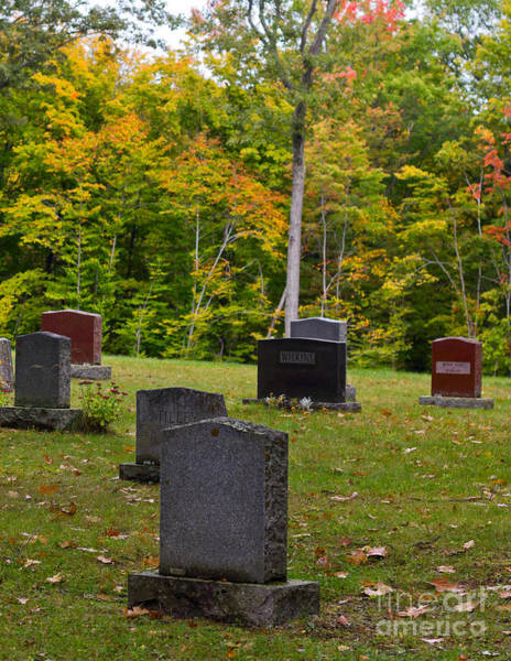 Photograph - Country Cemetery In The Fall by Les Palenik
