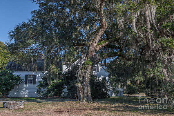 Photograph - Country Estate Of Charles Pinckney by Dale Powell