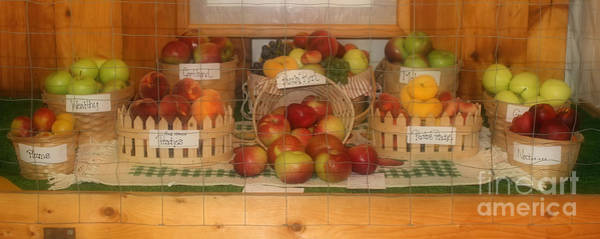 Photograph - Country Fair Fruit Display by Smilin Eyes  Treasures