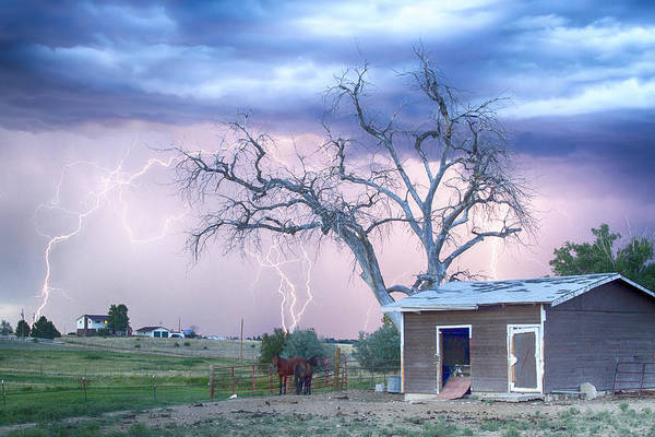 Wall Art - Photograph - Country Horses Riders On The Storm by James BO Insogna