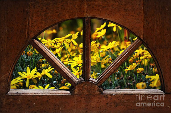 Wall Art - Photograph - Country Kitchen Window by Kaye Menner