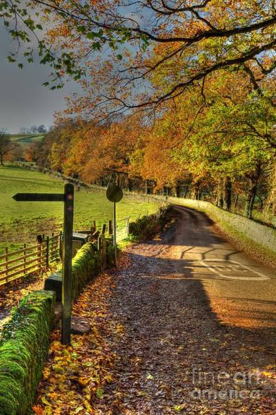 Photograph - Country Lane In Autumn by David Birchall