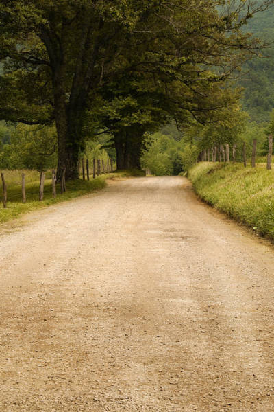 Cades Cove Photograph - Country Lane - Smoky Mountains by Andrew Soundarajan