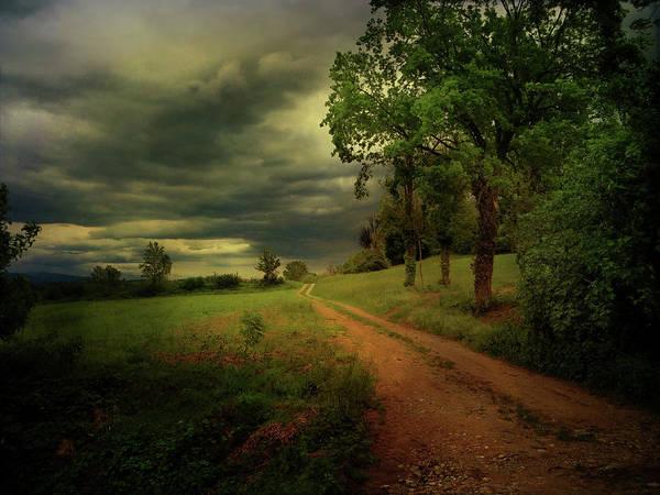 Friuli Photograph - Country Lanes by Dima Lauzzana