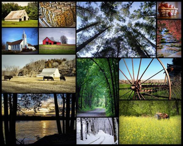 Photograph - Country Living by Cricket Hackmann