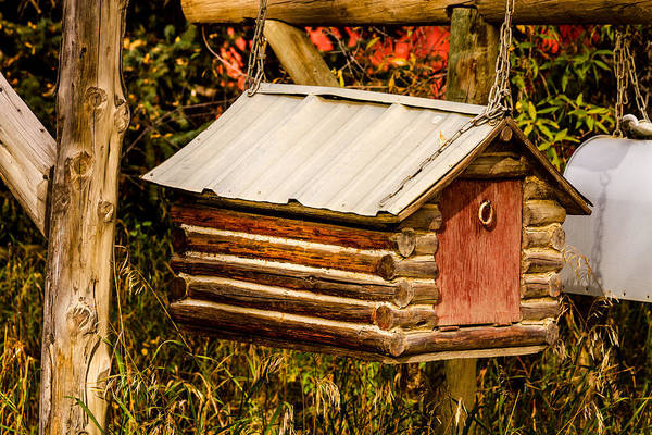 Photograph - Country Mail by Teri Virbickis