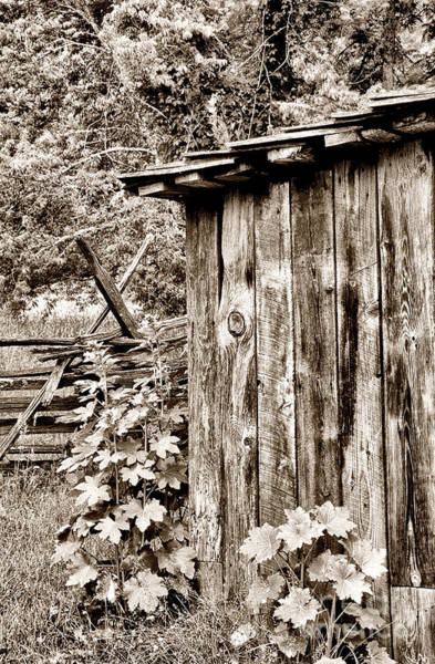 Wall Art - Photograph - Country Outhouse by Paul W Faust -  Impressions of Light
