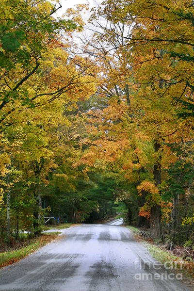 Photograph - Country Road Fall Vermont by Deborah Benoit