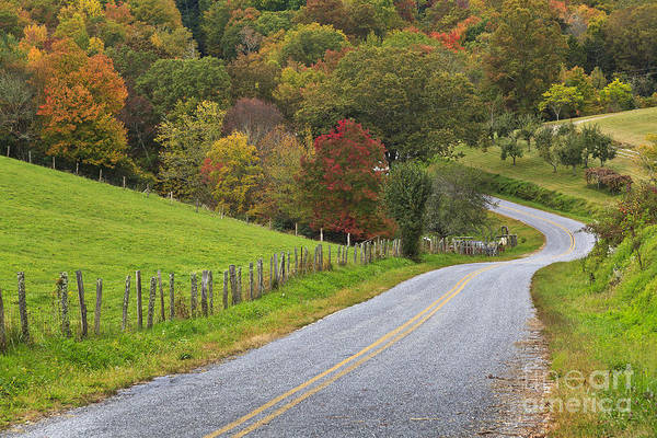 Photograph - Country Road In The Fall by Jill Lang