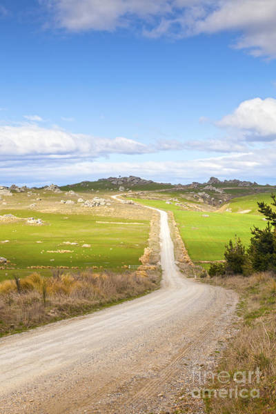 Gravel Road Photograph - Country Road Otago New Zealand by Colin and Linda McKie