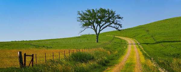 Photograph - Country Road by Ryan Heffron