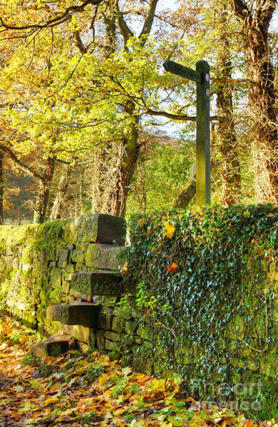 Photograph - Country Stile by David Birchall