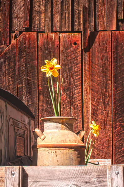 Photograph - Country Still Life by Sherri Meyer