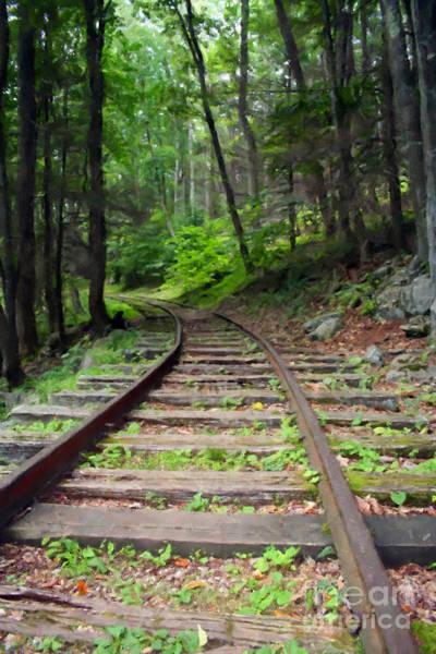 Photograph - Vintage Rail Tracks by Doc Braham