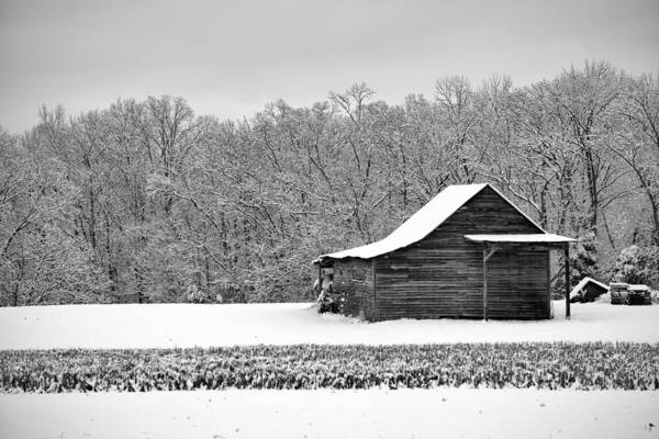 Photograph - Country Winter 2 by Patrick M Lynch