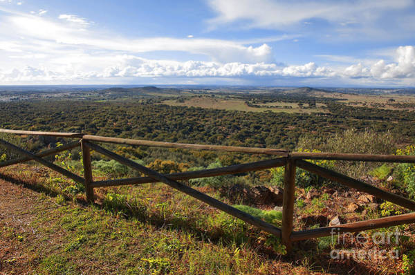 Breeze Photograph - Countryside Viewpoint by Carlos Caetano