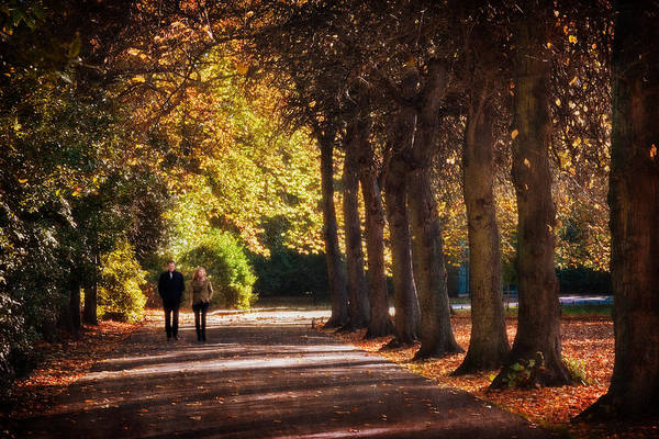 Photograph - Couple Walking In Stephens Green - Dublin by Barry O Carroll