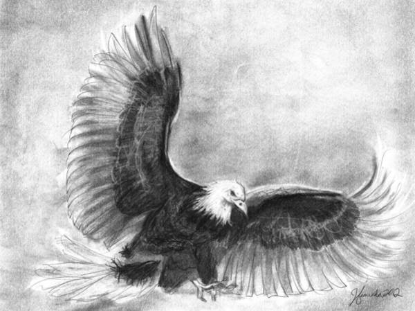 Bald Eagles Drawing - Courage by J Ferwerda