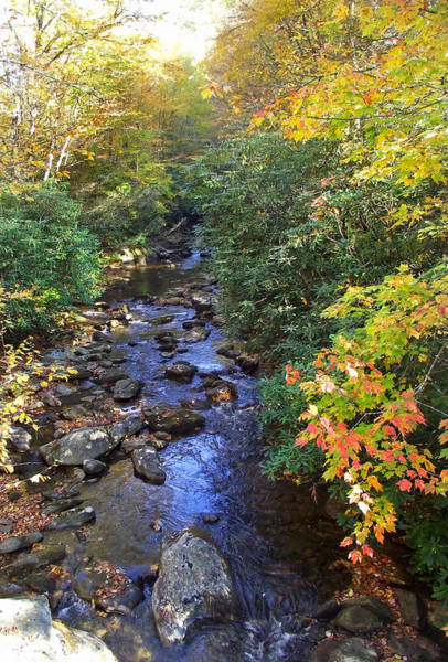 Photograph - Courthouse Creek In Autumn by Duane McCullough