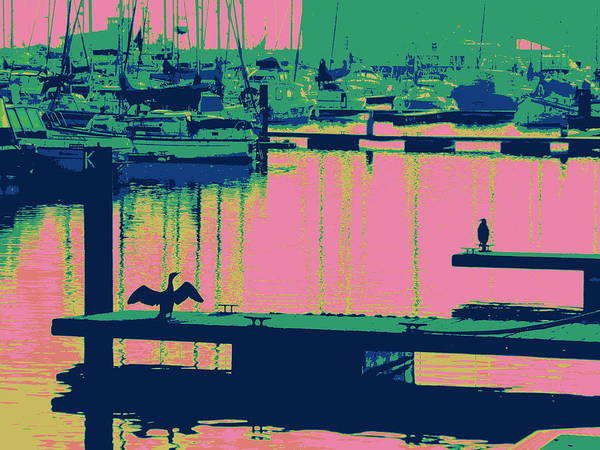 Wall Art - Photograph - Courtship Hartlepool, 2014, (digitally Enhanced Photo) by Peter Mcclure