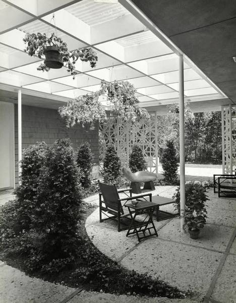 Patio Photograph - Courtyard With Plants by Pedro E. Guerrero