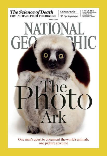 Houston Zoo Photograph - Cover Of The April 2016 National by Joel Sartore