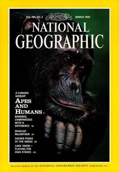 Gombe National Park Wall Art - Photograph - Cover Of The March, 1992 National by Michael Nichols
